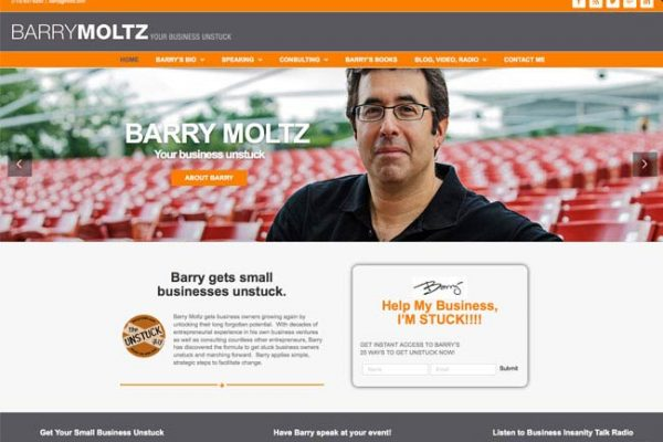 Barry Moltz Responsive WordPress Design and Theme
